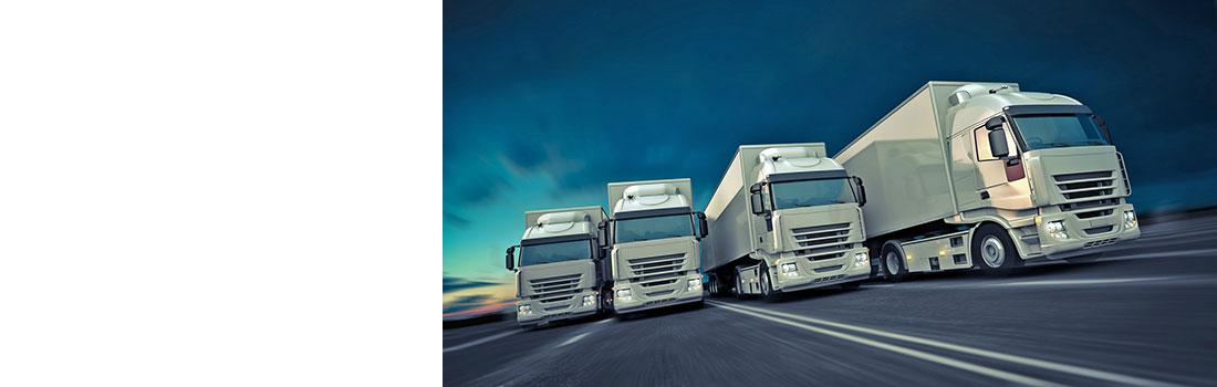 Flotte de camions - location_transports camoit 2